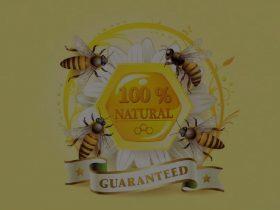 """蜂胶被广誉为""""紫色黄金"""",产量低,很稀有!"""