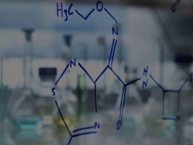 不同浓度的河南蜂胶对金黄色葡萄球菌耐药菌株的抑菌作用