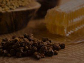 蜂胶有助于治疗癌症,舒缓湿疹,甚至缓解流感