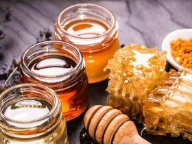 蜂胶的5大好处,让你想吃'蜂胶'