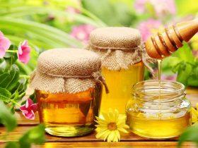 蜂胶:性质,应用及其潜力