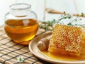 蜂胶的十大治疗功效
