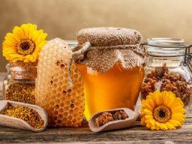 蜂胶:伤口愈合的新领域?