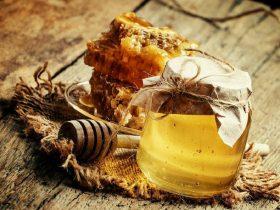 蜂胶的药用发展史