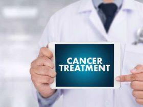 神奇的蜂胶治疗癌症的新宠