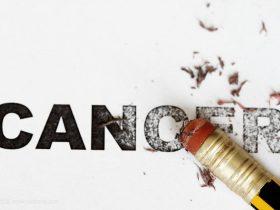 蜂胶:你和肿瘤之间的天然防护屏障!