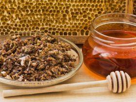 蜂胶在肝病治疗中的应用!