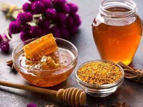 利用蜂胶治疗疾病的临床案例