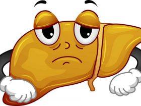 蜂股对肝病有作用吗?