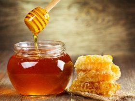 悠久的蜂胶应用历史 !