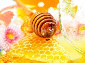 未来保健品市场的NO1,竟然是蜂产品!值得一看!