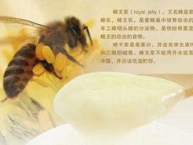 蜂王浆保健四问,我们应该,也必须知道